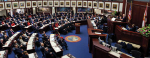 Legislative issues FL